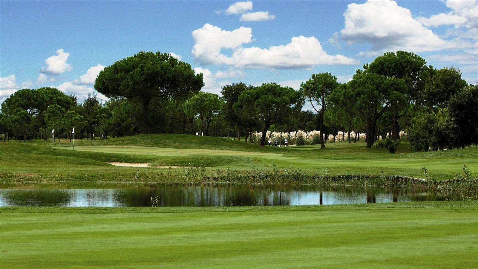 Risultati immagini per golf club lignano
